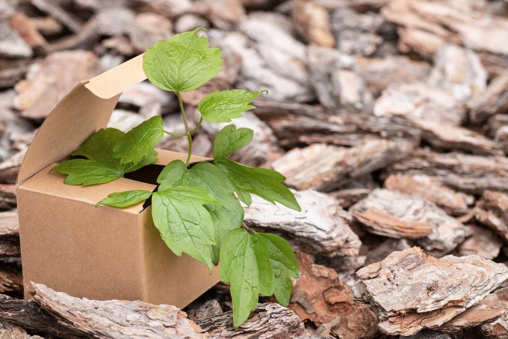 Pour ses vertus écologiques, le carton semble être à première vue le choix idéal.